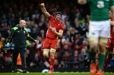 14.03.15 - Wales v Ireland - RBS 6 Nations 2015 - Sam Warburton of Wales celebrates at the final whistle.