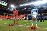 12.11.16 - Wales v Argentina - Under Armour Series -Gethin Jenkins of Wales and Agustin Creevy of Argentina lay wreaths of poppys.